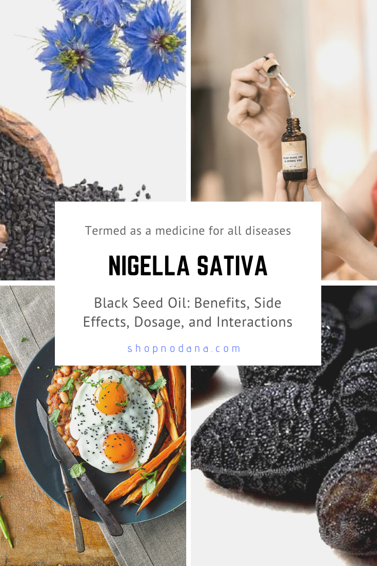 nigella sativa benefits