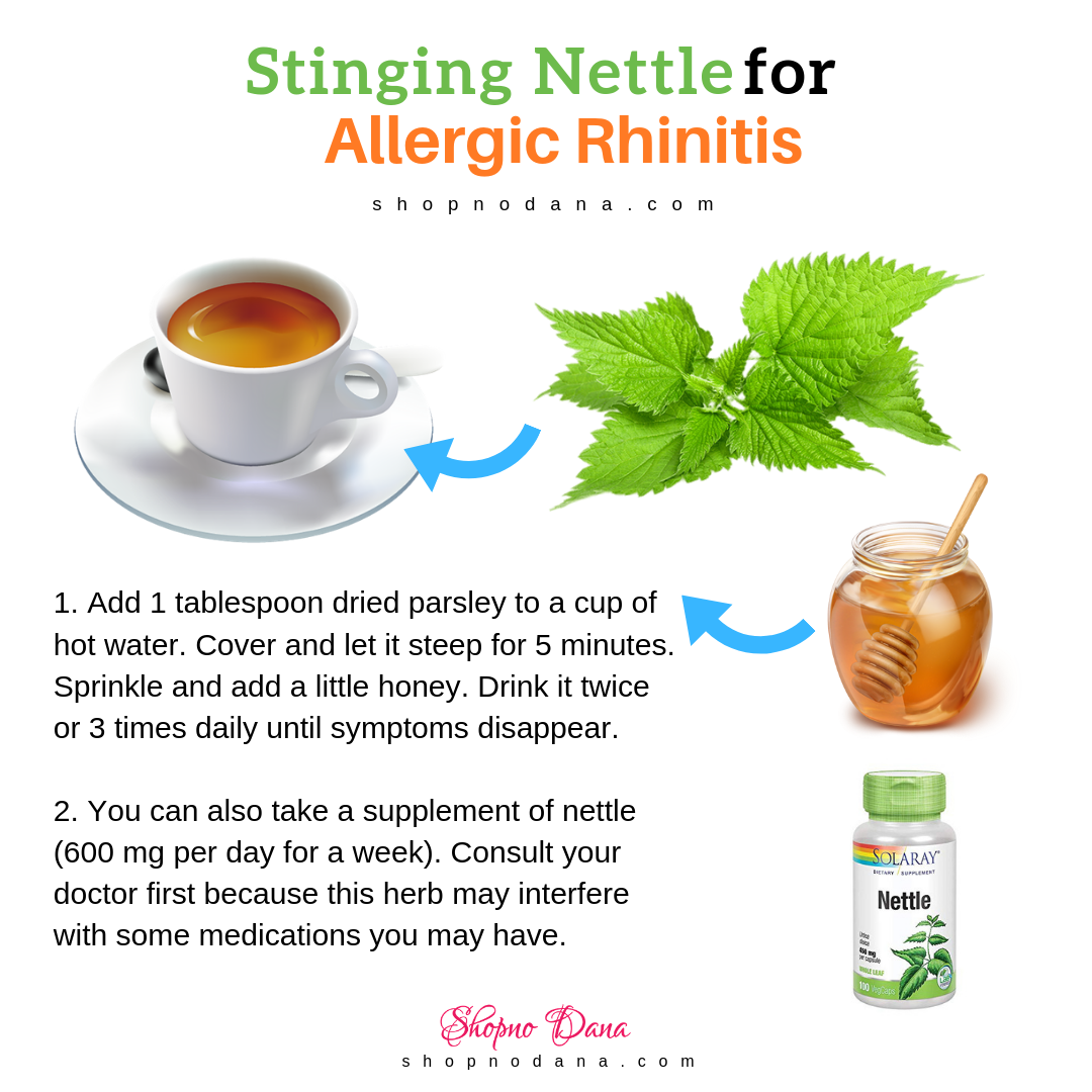 Stinging Nettle for allergic rhinitis